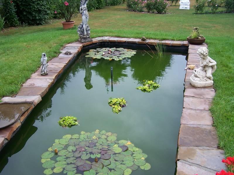 Nabbefeld schages garten und landschaftsbau teich for Gartenteich umrandung